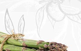 organic-shop-sidebar-banner-1
